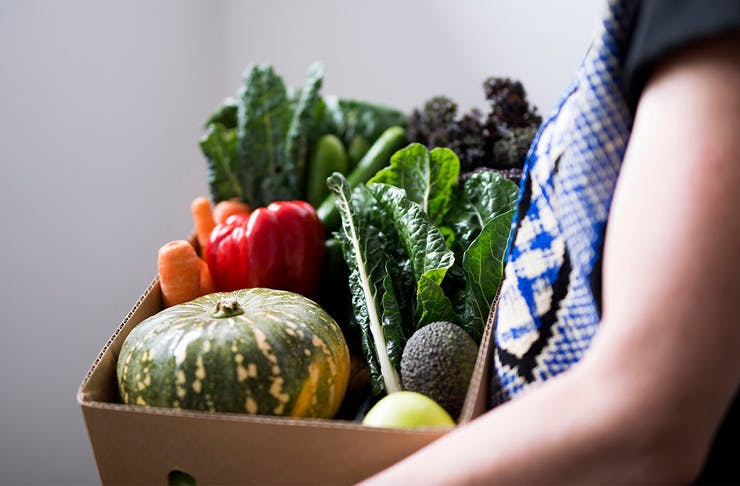 A. person holding a box of fresh vegetables.