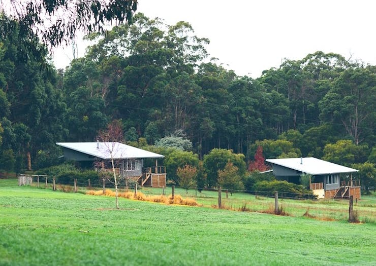 Farms You Can Actually Stay On In WA