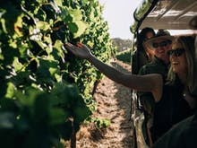 Ride And Wine On This Intimate New Margaret River Vineyard Tour