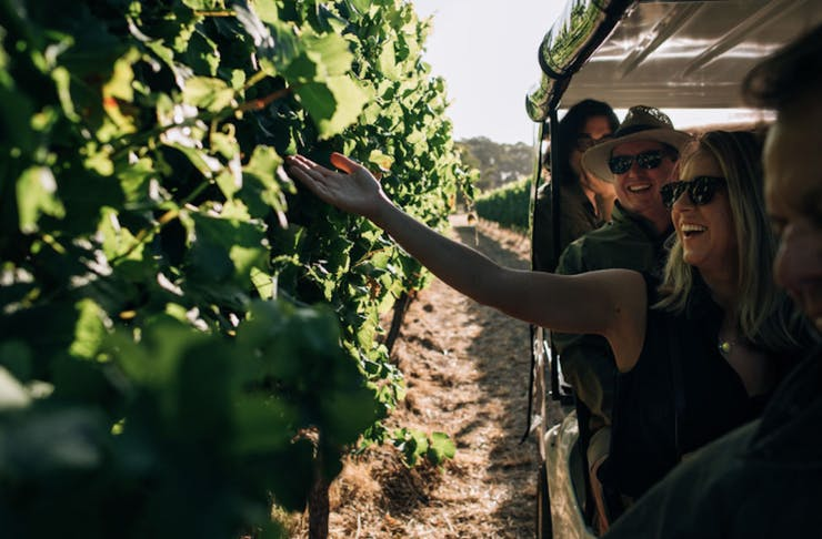 Fraser Gallop Winery Tour