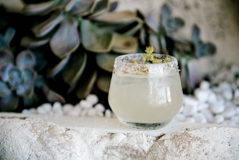 a margarita cocktail
