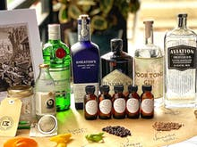 Take Your Iso Celebrations Next Level With This Gin Tasting Delivery And Virtual Masterclass