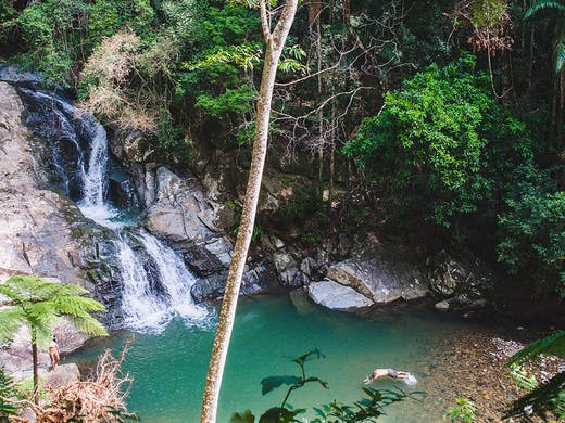 Hunt Down 7 Magical Gold Coast Waterfalls You Can Actually Swim ...