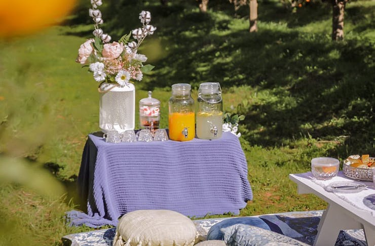 A table set up with fresh juice and refreshments in amongst the orchard at Golden Grove