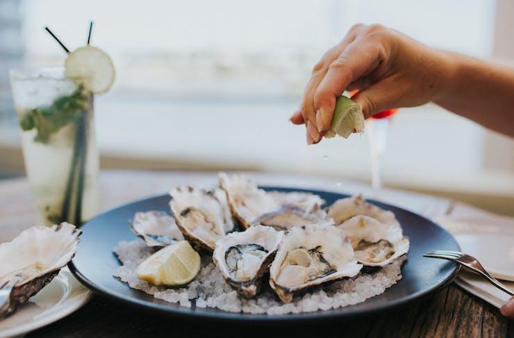 Best seafood Brisbane, Brisbane seafood