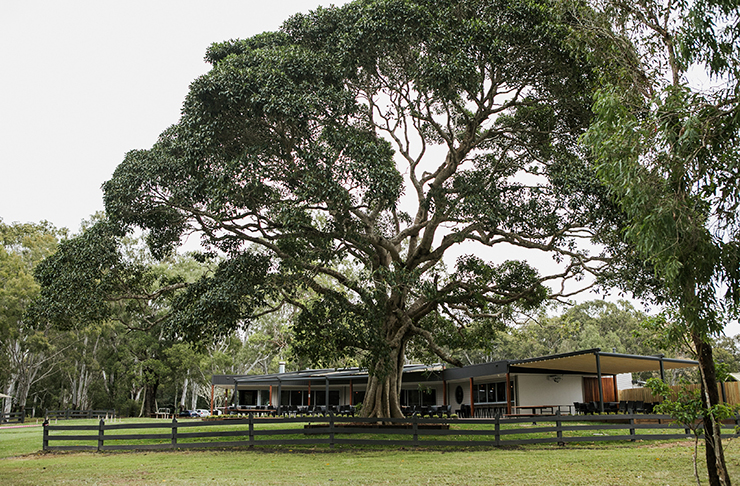 Habitat Noosa