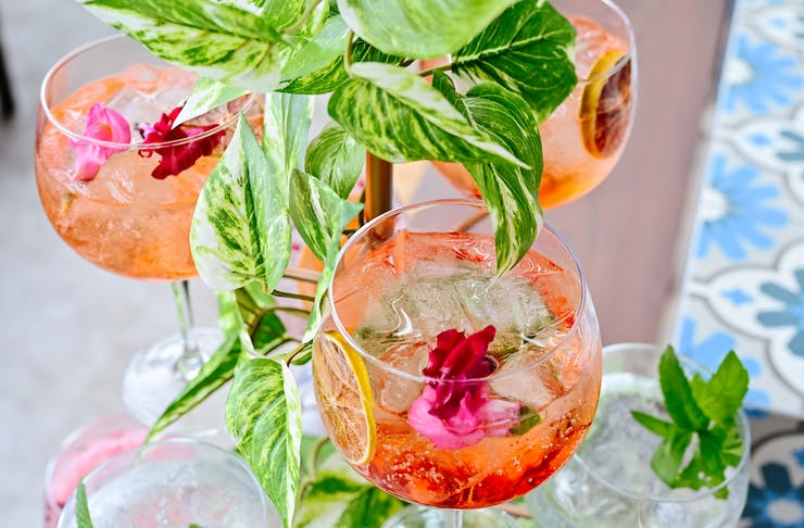 Close up of wine glasses filled with spritz hanging from a metal tree