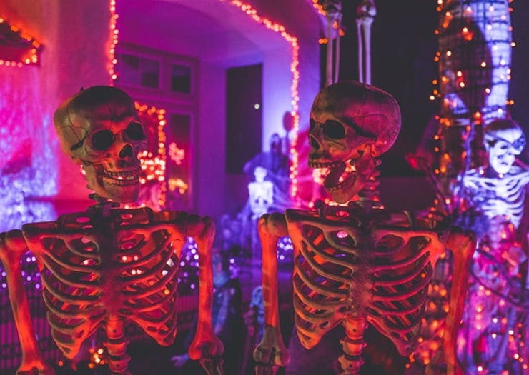 Get Spooked At This Crazy Horror Maze