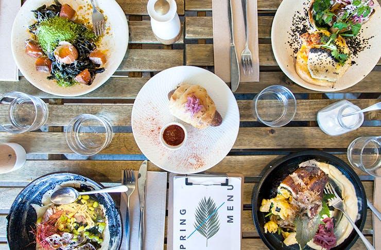 Haven-Tailoring-Coffee-Joyously sydney, best cafes sydney