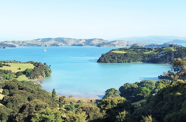 10 Must Do's In New Zealand's North Island