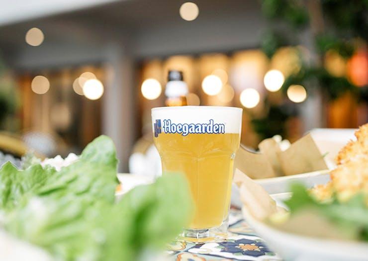 Hoegarden terrarium pop-up workshop brisbane