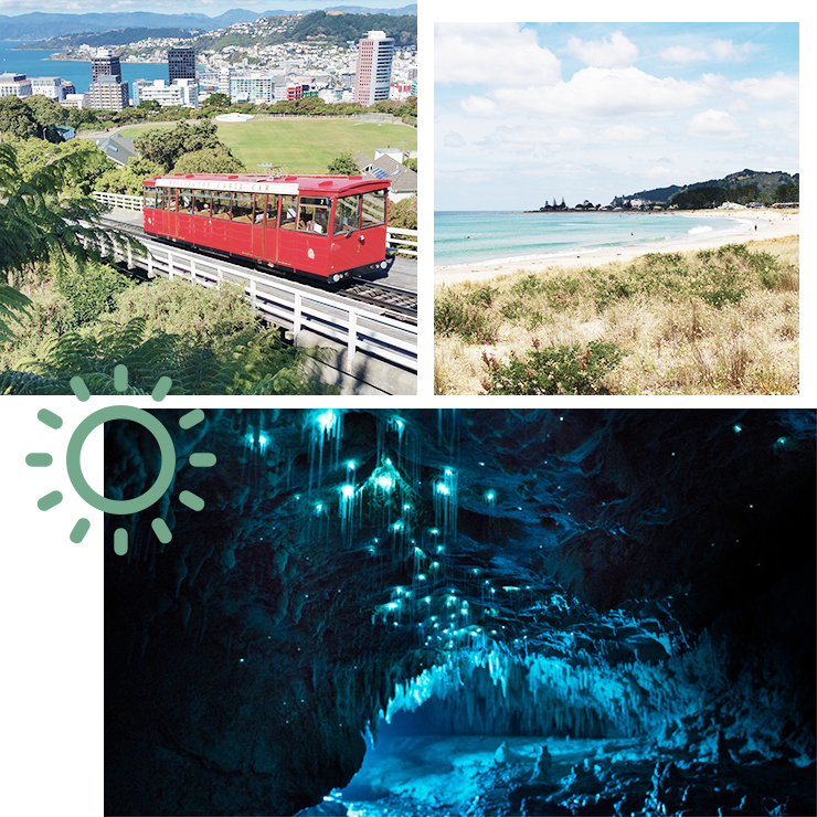 north island nz, what to do in new zealand north island