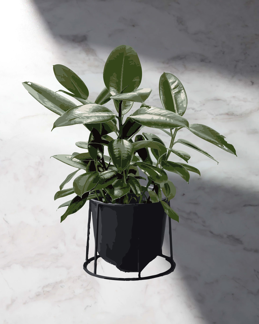 A Guide To Indoor Plants For Serial Plant Killers | | Urban List