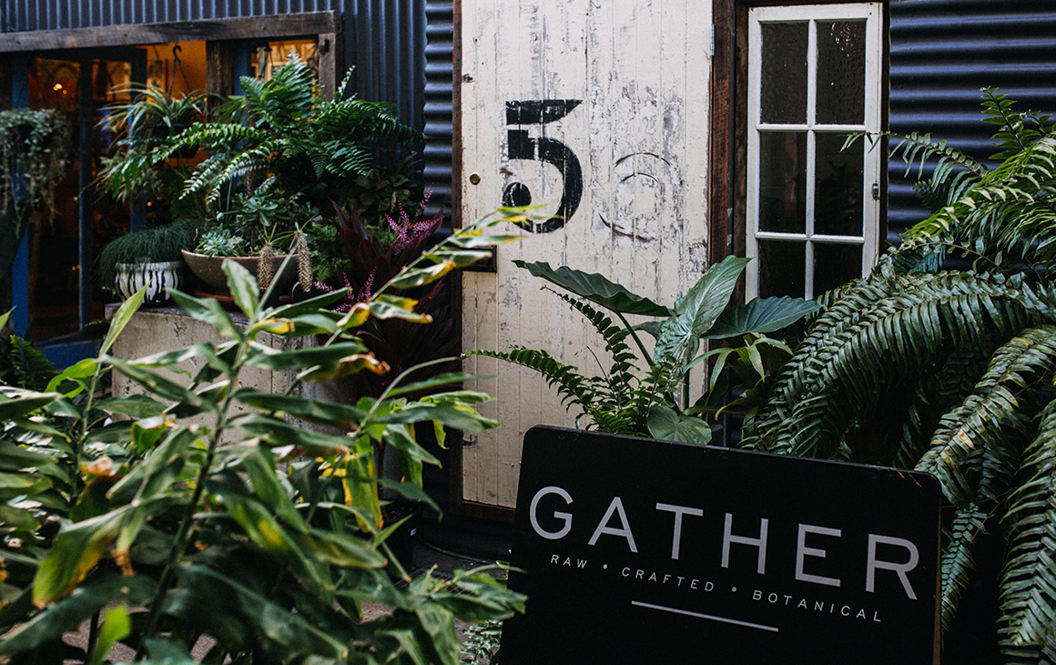 6 Of The Best Indoor Plant Shops On The Gold Coast | Gold Coast