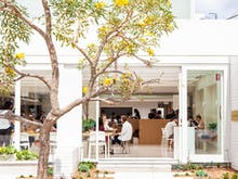 The Verdict   Industry Beans Is Newstead's Airy New Cafe And Bar