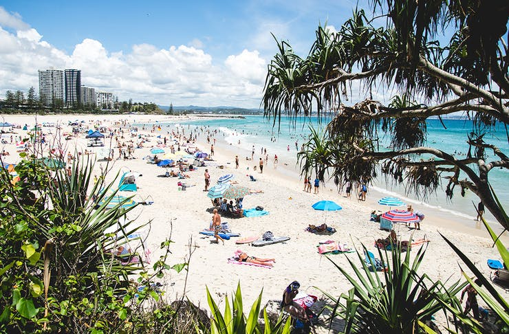 things to do on the gold coast january