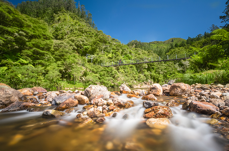Discover The Best Day Trips From Auckland