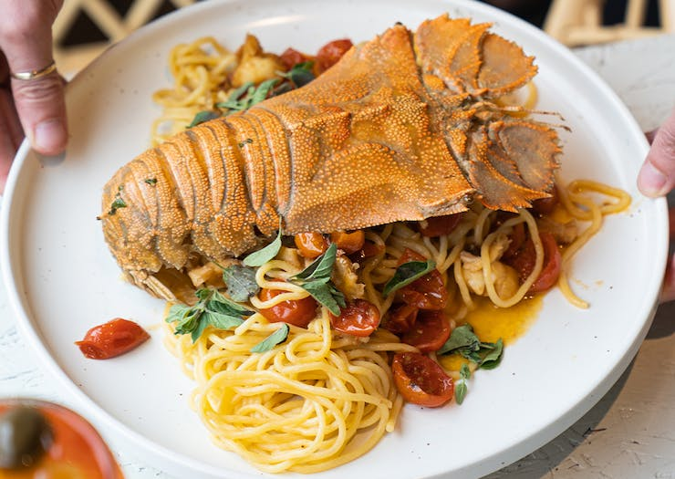 a plate of spaghetti with moreton bay bug on top
