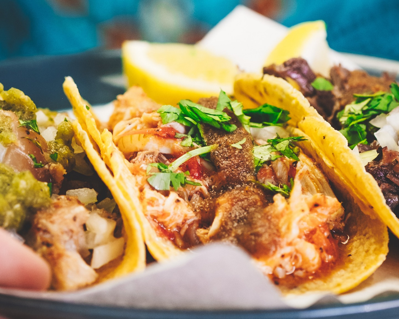 A close up shots of tacos served in La Mexicana