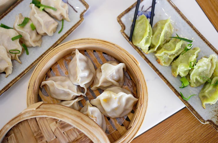 Selection of steamed and pan fried dumplings
