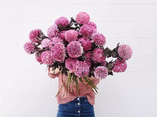 Perth's Most Stylish Flower Delivery Services   Perth