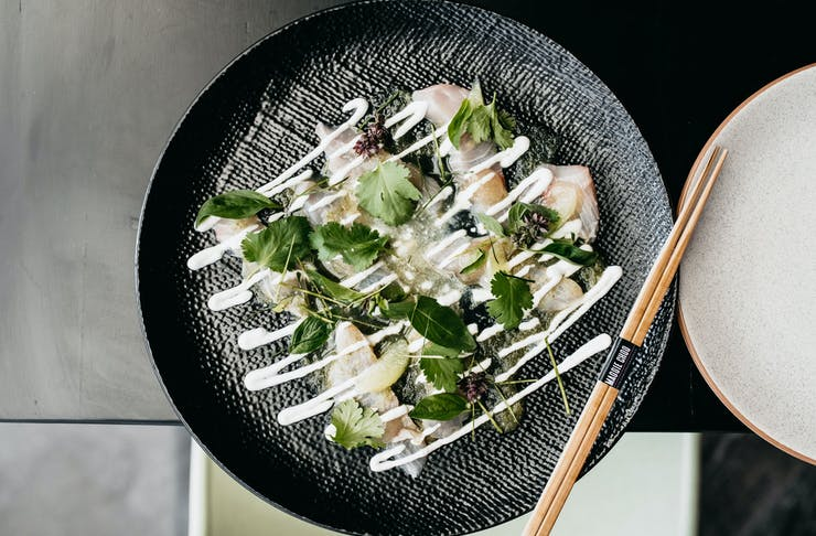 An aerial shot of a plate of Kingfish sashimi drizzled in a white sauce.