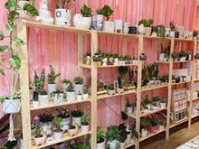 Support Local At This Insta-Worthy Pop-Up Market Hub In Perth