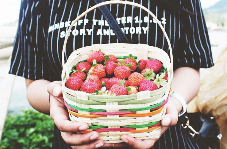 Melbourne-markets-strawberries