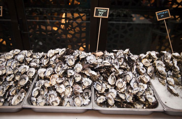 Melbourne Oyster Frenzy 2016