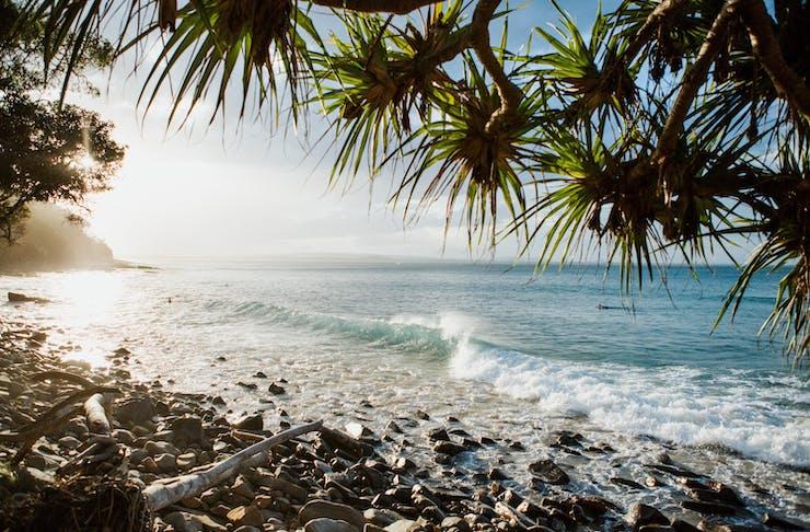 things to do sunshine coast