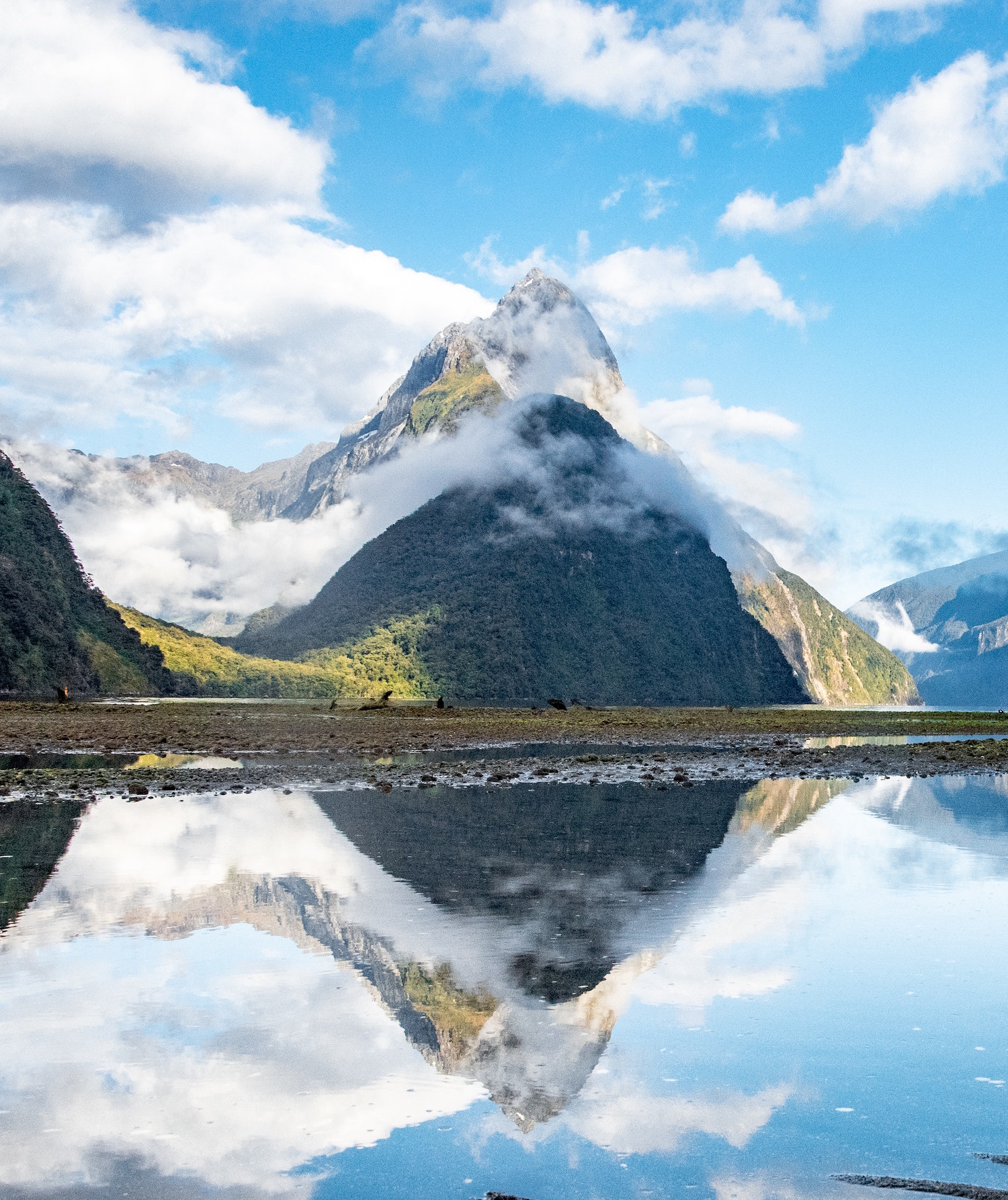 Perfect reflection of clouds and mountains and on a lake at Milford Sound.