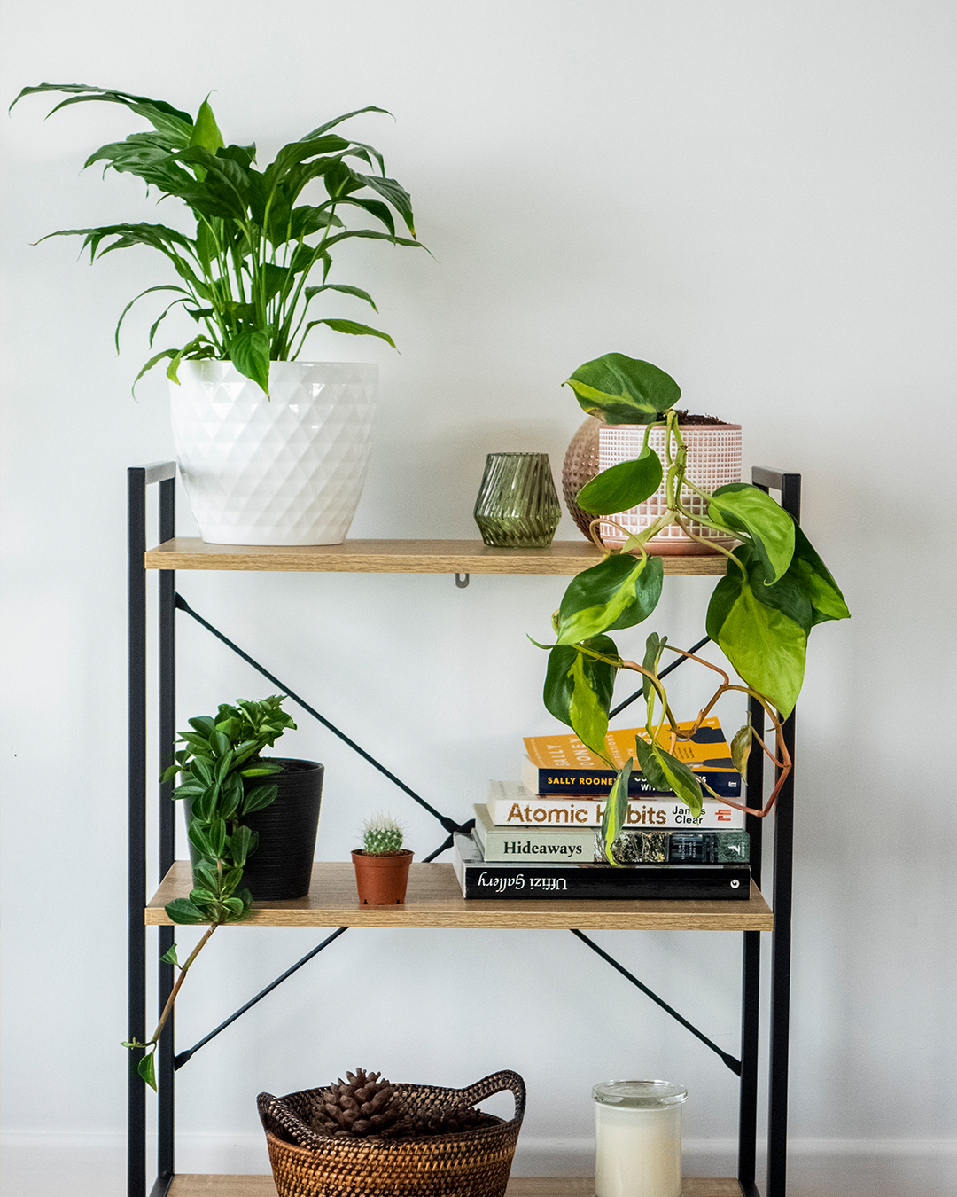 A Tiered shelf