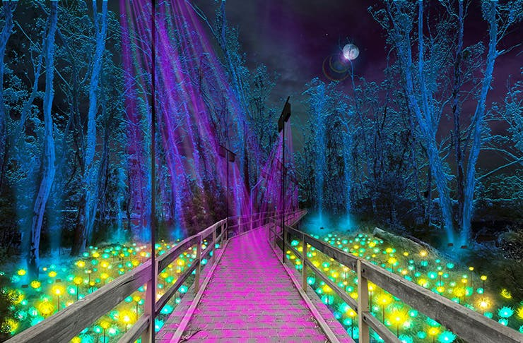 A concept artwork with blue lit trees in the night sky with a board walk with purple light shining down and neon bushes at either side.