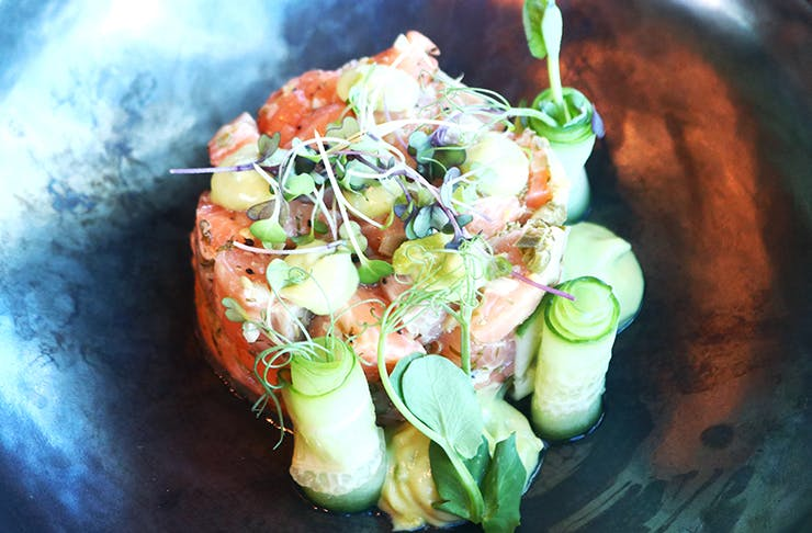 New Opening: The Churchill