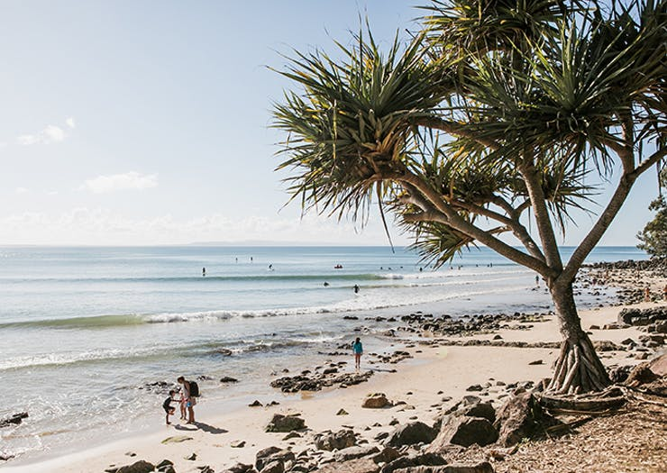 Paradise Found | The 30 Best Things To Do In Noosa