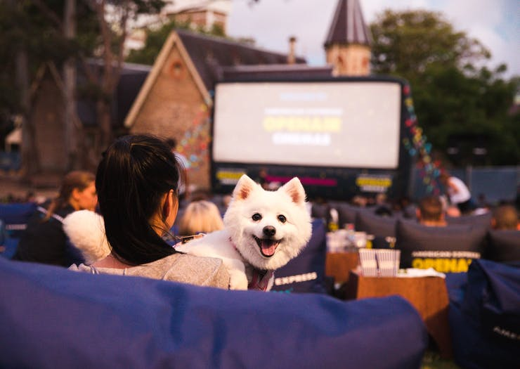 A Dog-Friendly Outdoor Cinema Just Opened In Brisbane