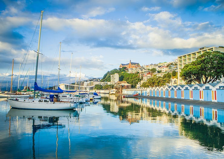 50 Epic Free Things To Do In Wellington That Won't Cost You A Penny