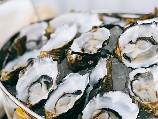 Ball Out On A Budget With 6 Boujee Cheap Oyster Nights Across Melbourne |  Urban List Melbourne