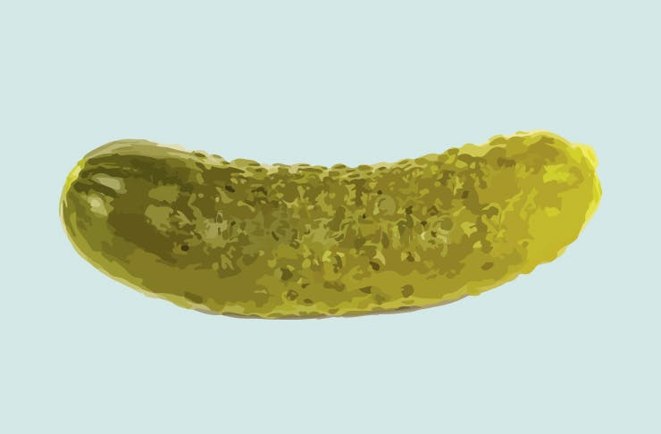 pickle haters
