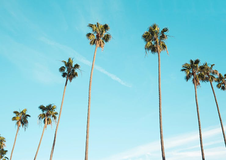 The Ultimate 48 Hours In Palm Springs