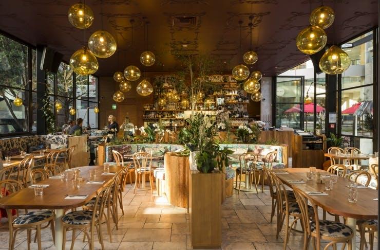 Auckland's Best Date Night Restaurants