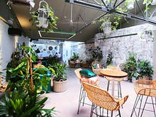 A Plants And Prosecco Workshop Is Happening At One Of Perth's Most Beautiful Bars