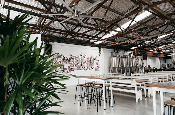 an industrial style warehouse interior with graffitied walls, long benches and plants