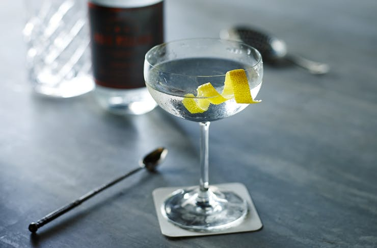 ultimate gin recipes