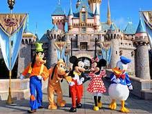 BREAKING NEWS | Dreams Do Come True! Queensland Is Getting A Disneyland