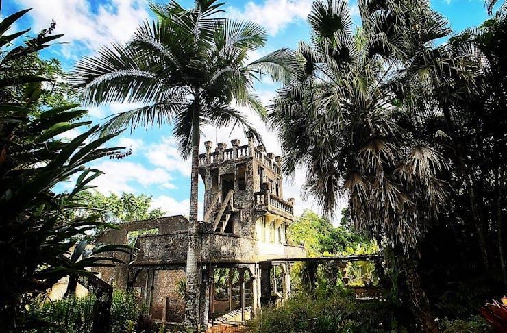 An ancient castle stands strong amongst a rainforest.