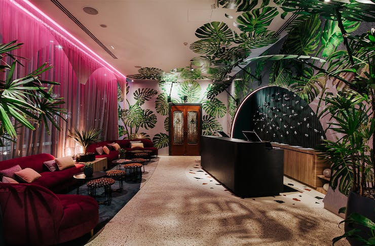 Inside of Ovolo The Valley's Jungle inspired lobby