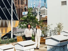 Meet The Urban Beekeepers Looking After Melbourne's Future