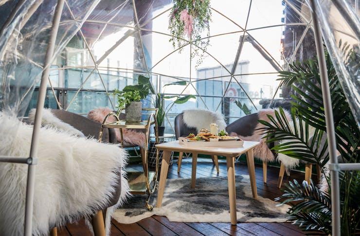 rooftop igloo perth aviary