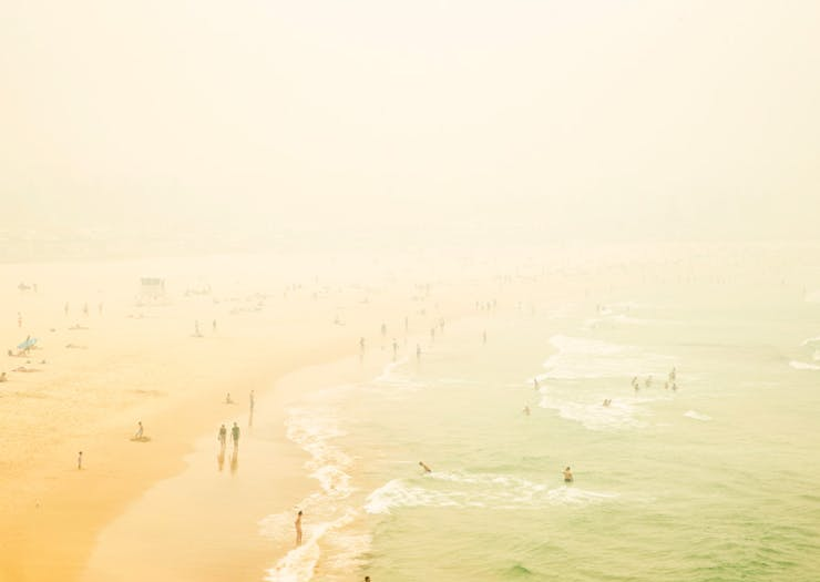 How To Know When To Walk Your Pooch, Hit The Beach Or Go For A Run In Sydney's Hazardous Smoke Haze